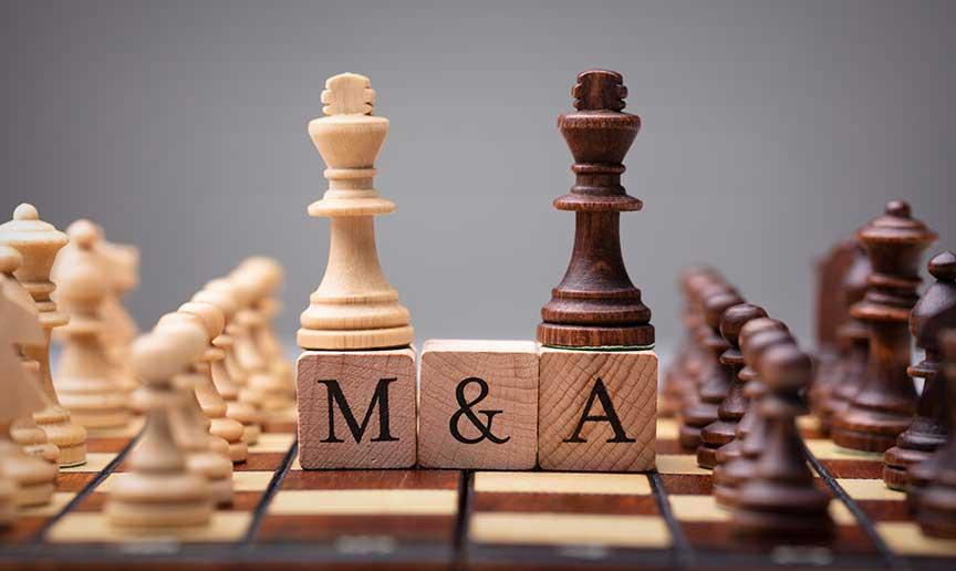 Merger Acquisition Game-Consultant.com